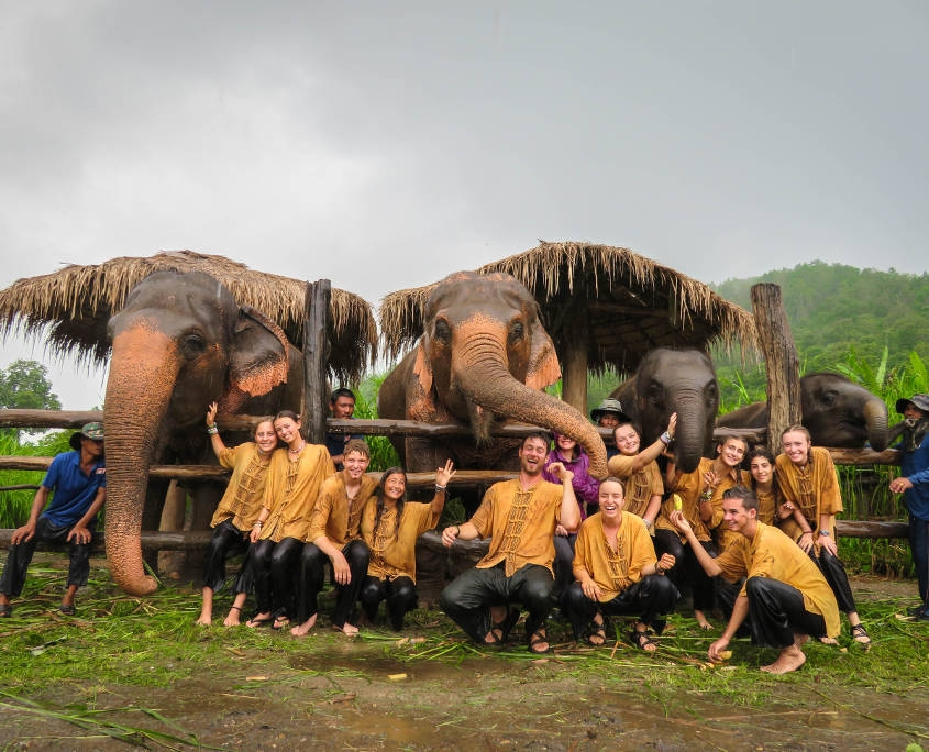 Thailand Elephant Experience - Group shot at the Sanctuary